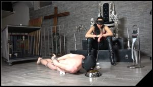 DELICIOUS SCAT CAVIAR – Mistress Gaia [scatting domination, new femdom scat]