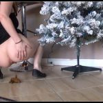 Tegan - Poo by the Christmas Tree [ Scat, Piss, Big shit, Solo, Smearing]